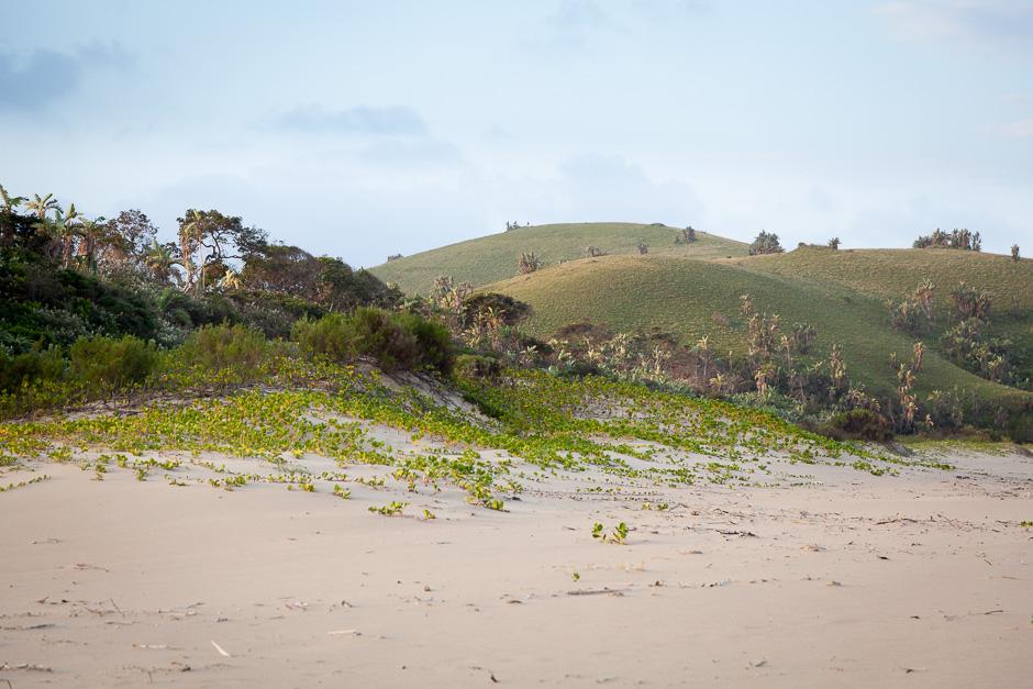 Gentle hills near the sea...